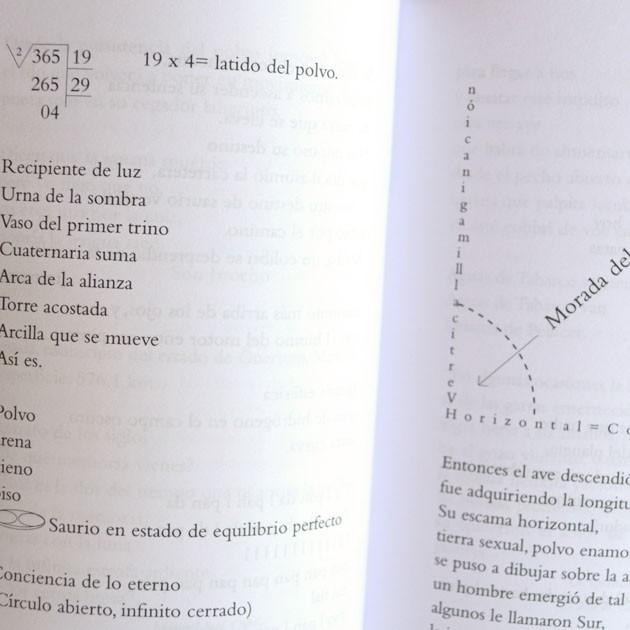 Morada del colibrí, Roberto López Moreno