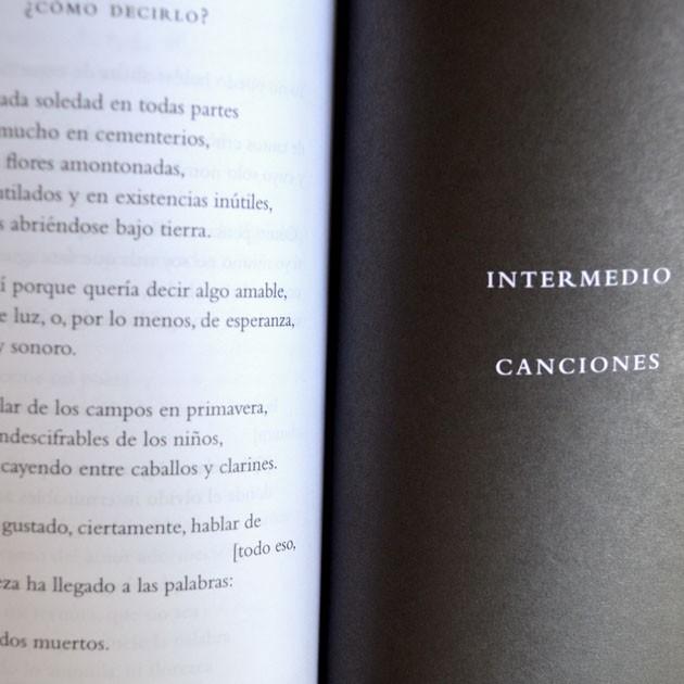 El Retorno y otros poemas, Miguel Guardia