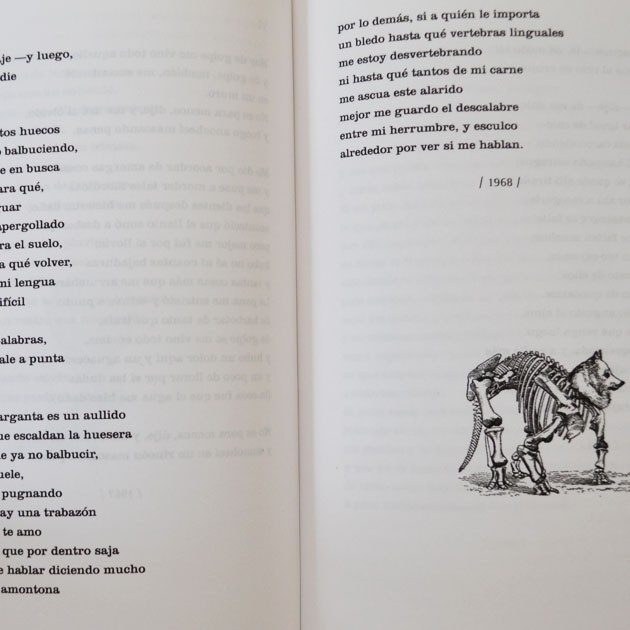 Max Rojas, Obra primera (1958-1986)